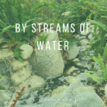 By Streams of Water